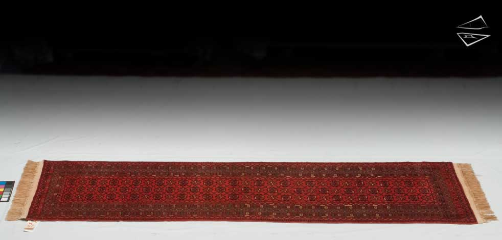 3x10 Daulatabad Design Rug Runner