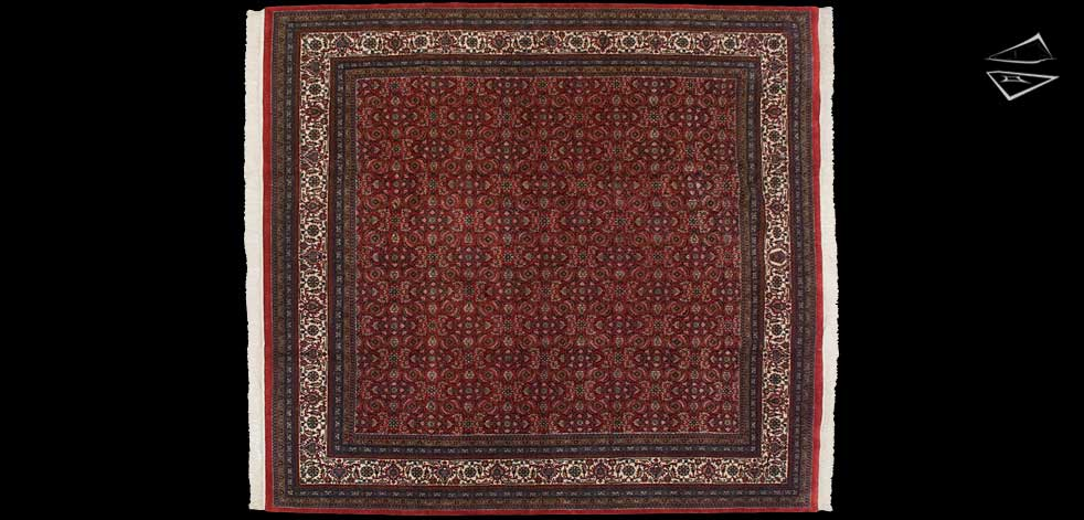 10x11 Herati Design Square Rug