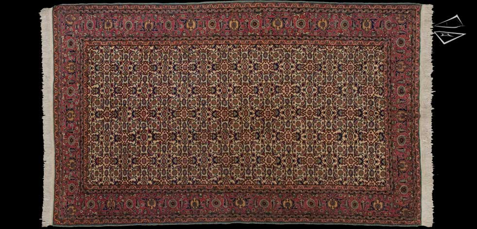 6x10 Turkish Herati Rug