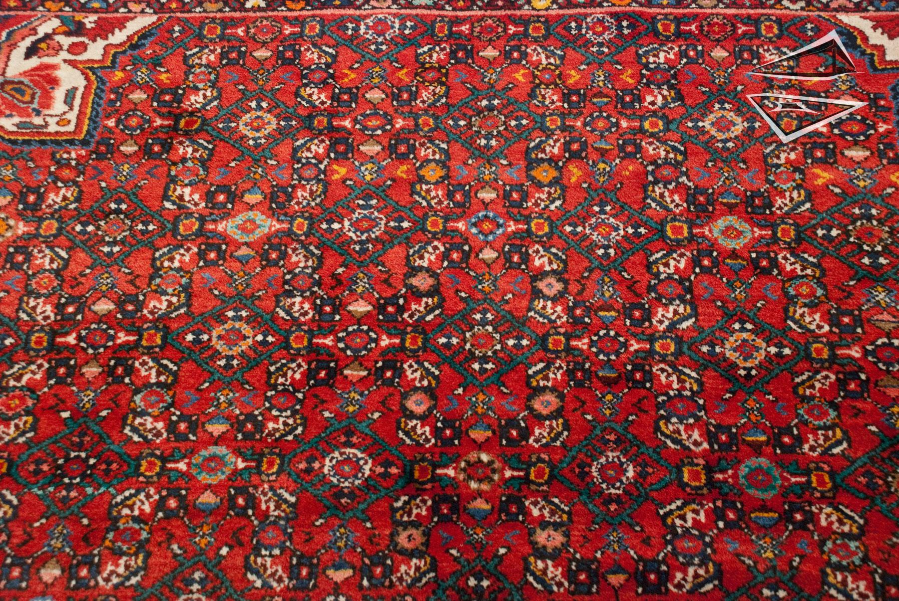 Persian Hoseinabad Rug 8 X 11