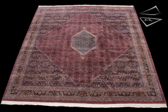 Bidjar Design Square Rug