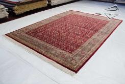 Agra Design Rug